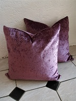 Purple new cushions